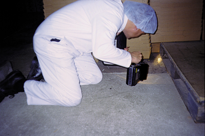 Pest Inspections in Suffolk