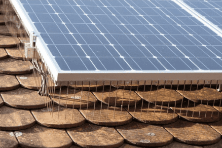 Solar panel deterrents